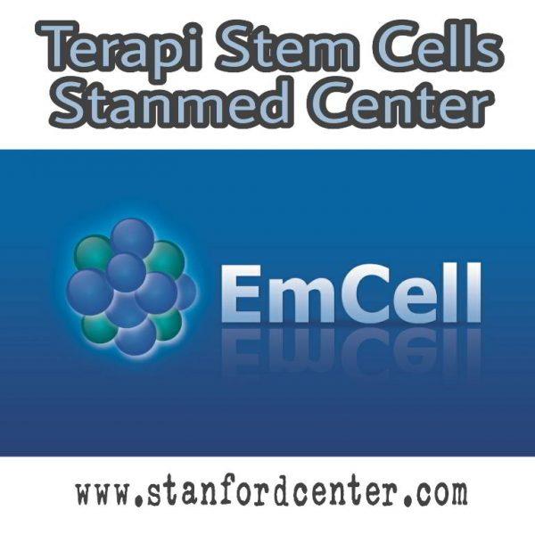 Menangkal Penuaan dan Penyakit dengan Terapi Stem Cell